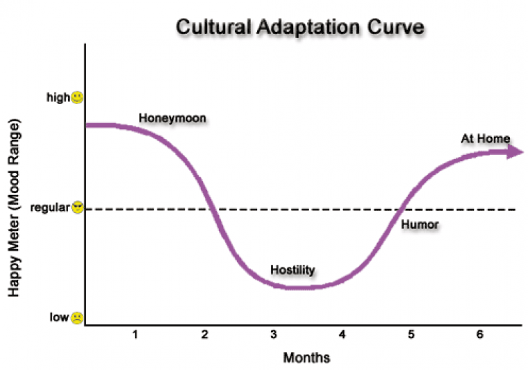 cultural adaptation curve for innovation leadership